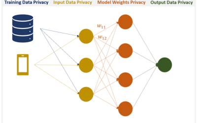 Perfectly Privacy-Preserving Artificial Intelligence