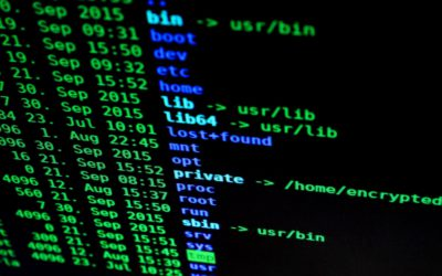 Cybersecurity and Privacy: Complements for a more secure Internet